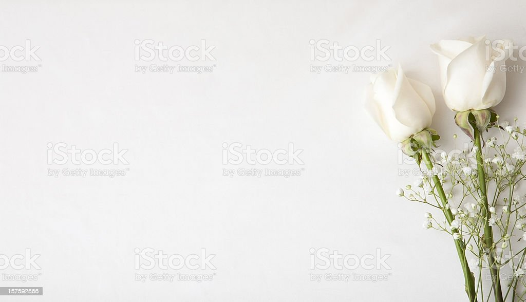 White Rose Wedding Invitation Stock Photo