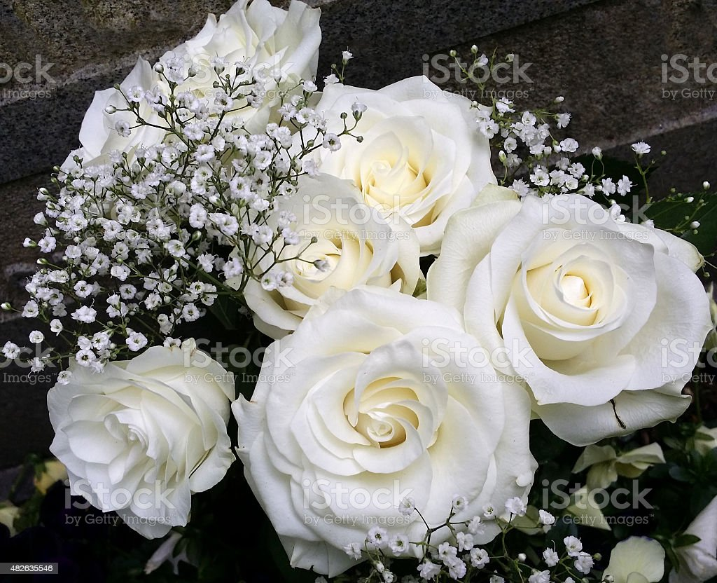 White Roses Bouquet With Babyss Breath Gypsophila Stock Photo More