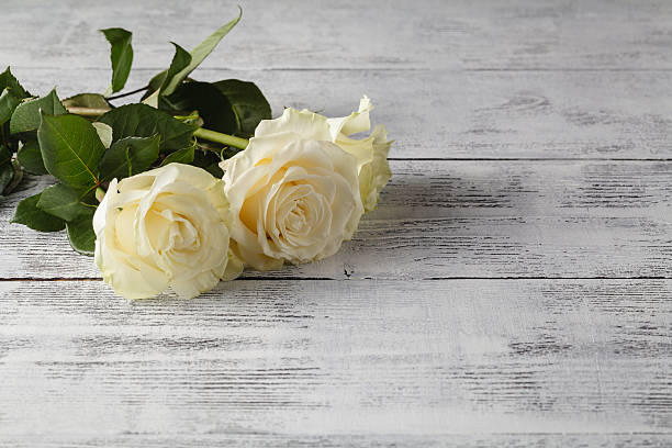 white roses on a wooden table - beerdigung stock-fotos und bilder
