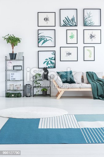 White round rug and blue carpet with stripes placed on the floor in bright living room interior with wooden couch, metal racks with plants and decor and posters hanging on the wall