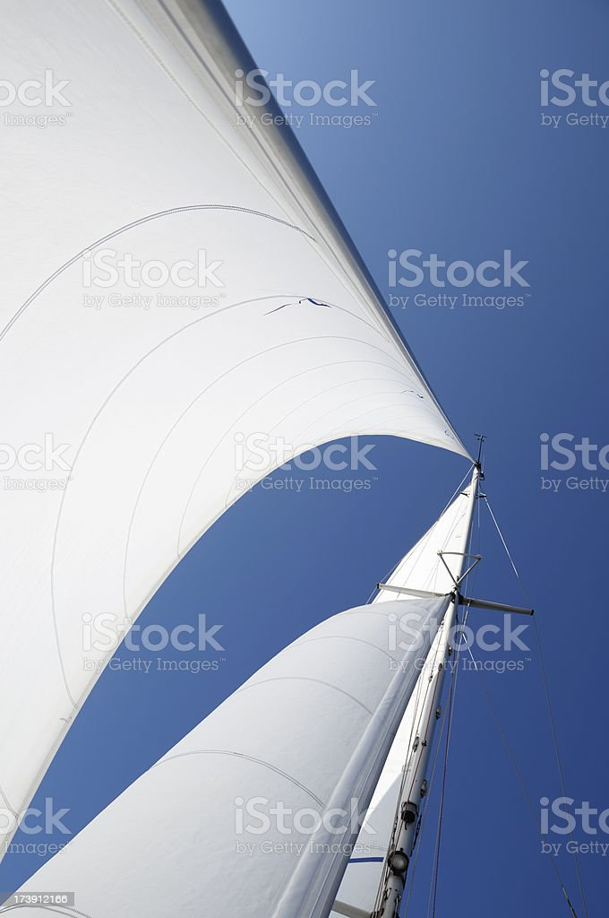 White sails royalty-free stock photo