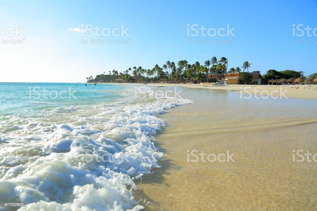 White sand beach and turquoise waves on green palm trees and blue sky background stock photo
