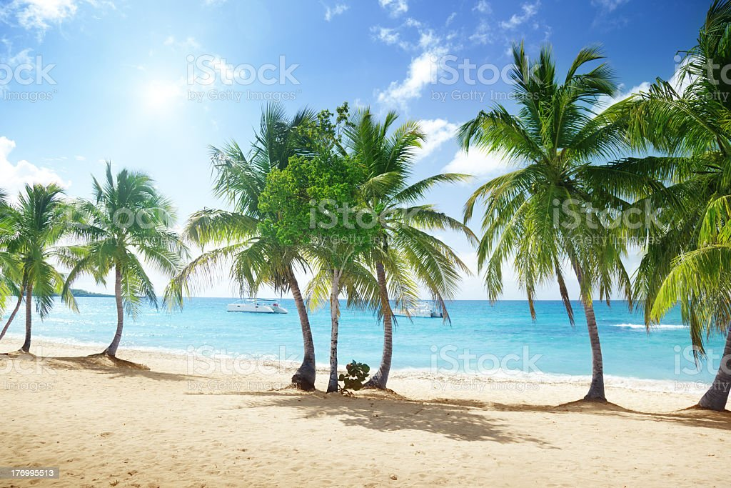 White sand beach of Catalina Island, Dominican Republic royalty-free stock photo