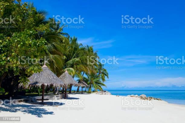 sipadan island essay Sipadan island tioman island more bidong island cherating johor marine park kapas island lang tengah island  its expansive coral beaches produce pure,.