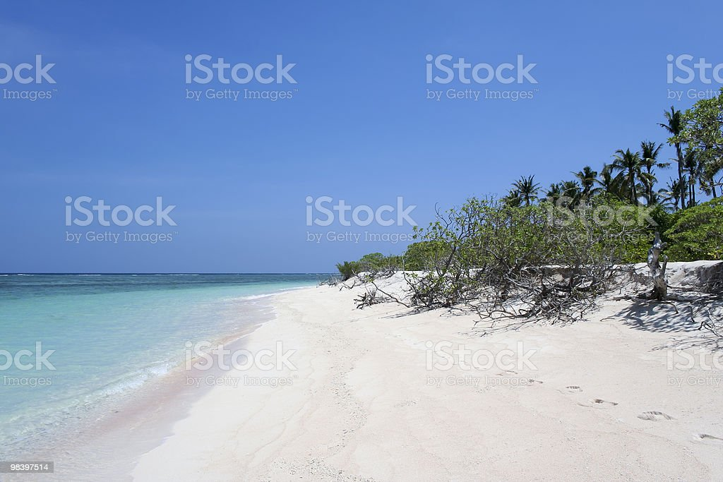 white sand beach tropical island stock photo