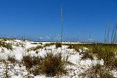 White sand beach with vivid blue sky
