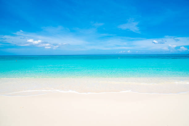 white sand seven mile beach - caribbean stock pictures, royalty-free photos & images