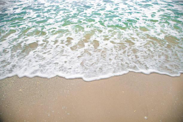 weißes meer blase am braunen sandstrand - roll tide stock-fotos und bilder