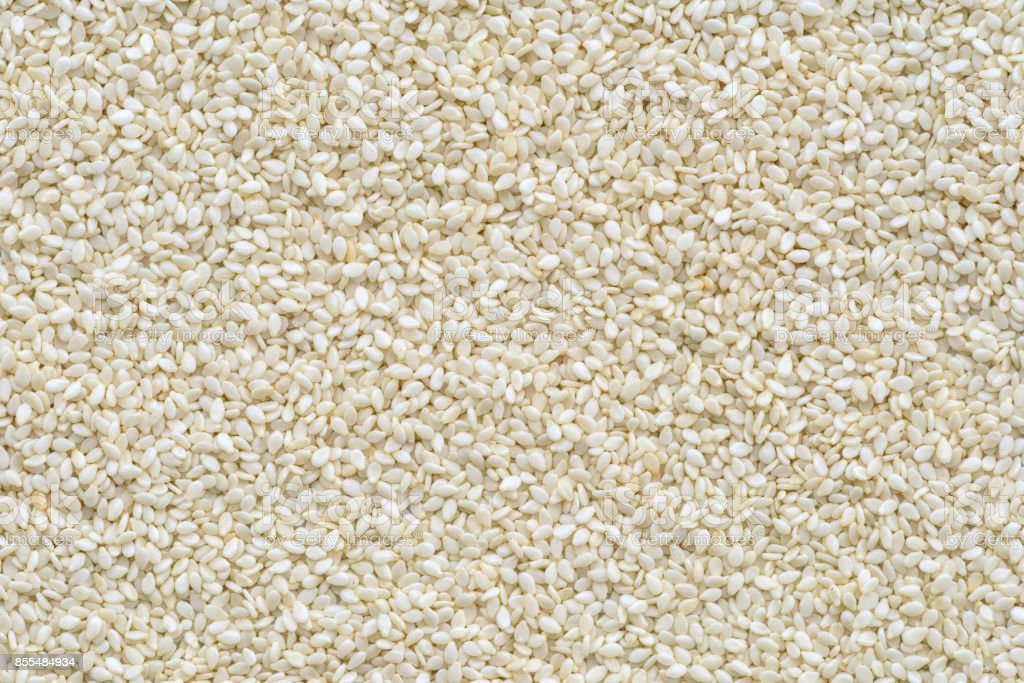 White sesames seed background and textured stock photo