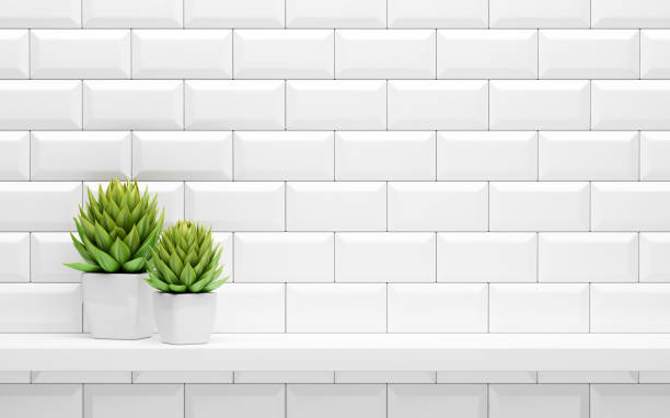 white shelf on tiled wall with green potted plants mock up - кафель стоковые фото и изображения