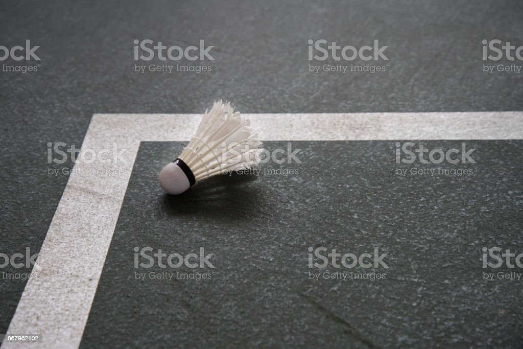 white shuttlecock for badminton sport game on  corner of indoor court  gymnasium background stock photo