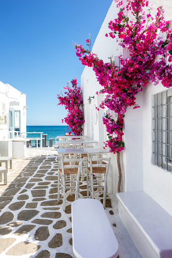 istock White small alley and houses with red bouganvillea flowers in Paros island 1094064838