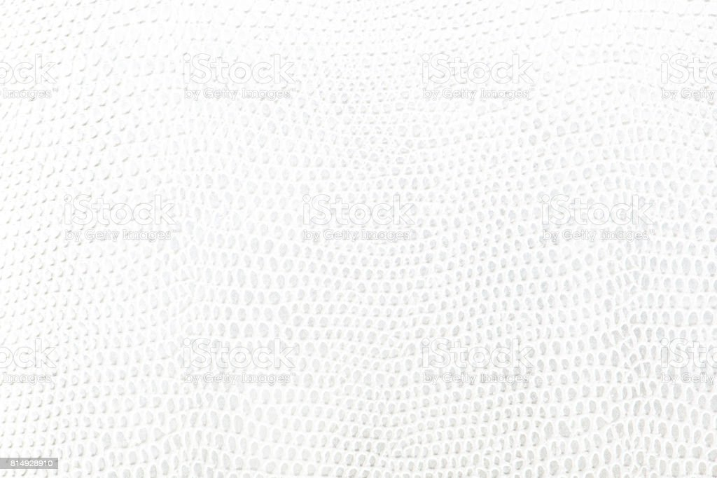 White snake Leather background texture stock photo