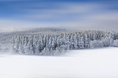 Panoramic view of the snow white mountains.