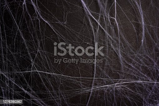 White spider's net on a black background. concept of halloween