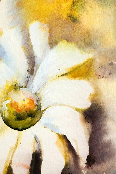 White Spring Flower. stock photo