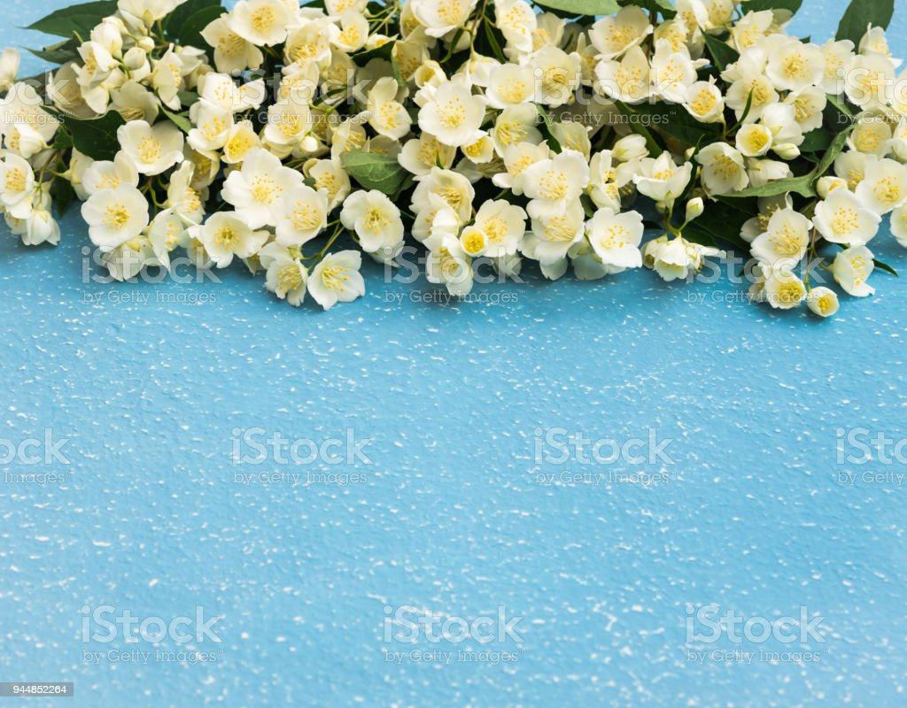 White spring flowers jasmine flowers bouquet on blue grunge textured white spring flowers jasmine flowers bouquet on blue grunge textured background royalty free stock izmirmasajfo