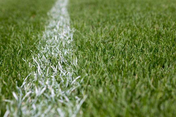 bandes blanches de marquage sur l'herbe verte - terrain de sport sur gazon photos et images de collection