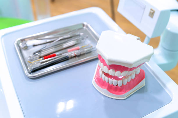 white teeth model and dental instruments on table in dentist clinic - dental assistant stock photos and pictures