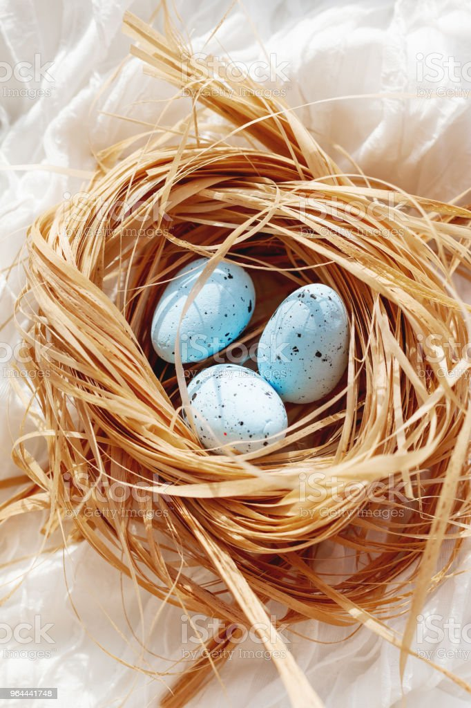 White textile background with bird nest. Decorative straw with blue eggs for Easter celebration. - Royalty-free Animal Nest Stock Photo