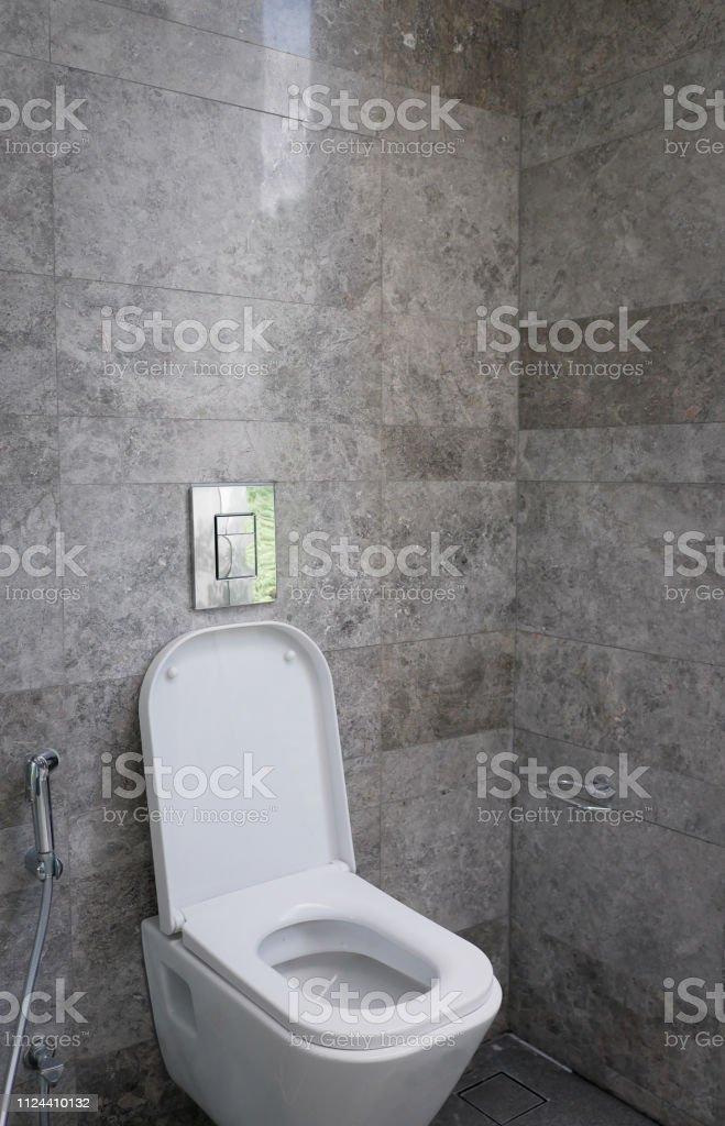 Inodoro Blanco En El Cuarto De Baño Moderno Foto de stock y ...