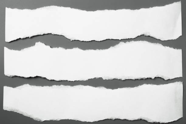 white torn paper on gray background. collection paper rip - torn stock photos and pictures