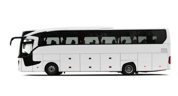 white tour bus - tour bus stock-fotos und bilder