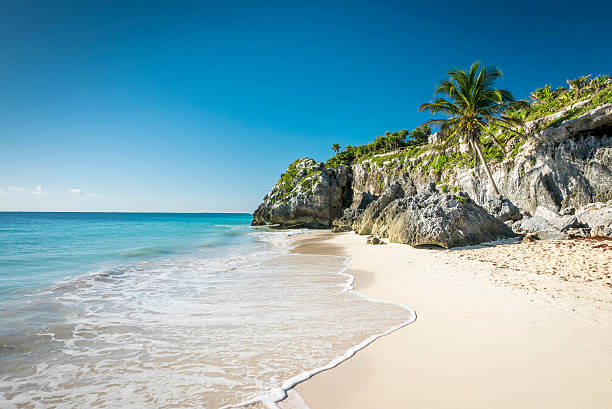 white tropical beach in tulum yucatan mexico - mexico stock photos and pictures