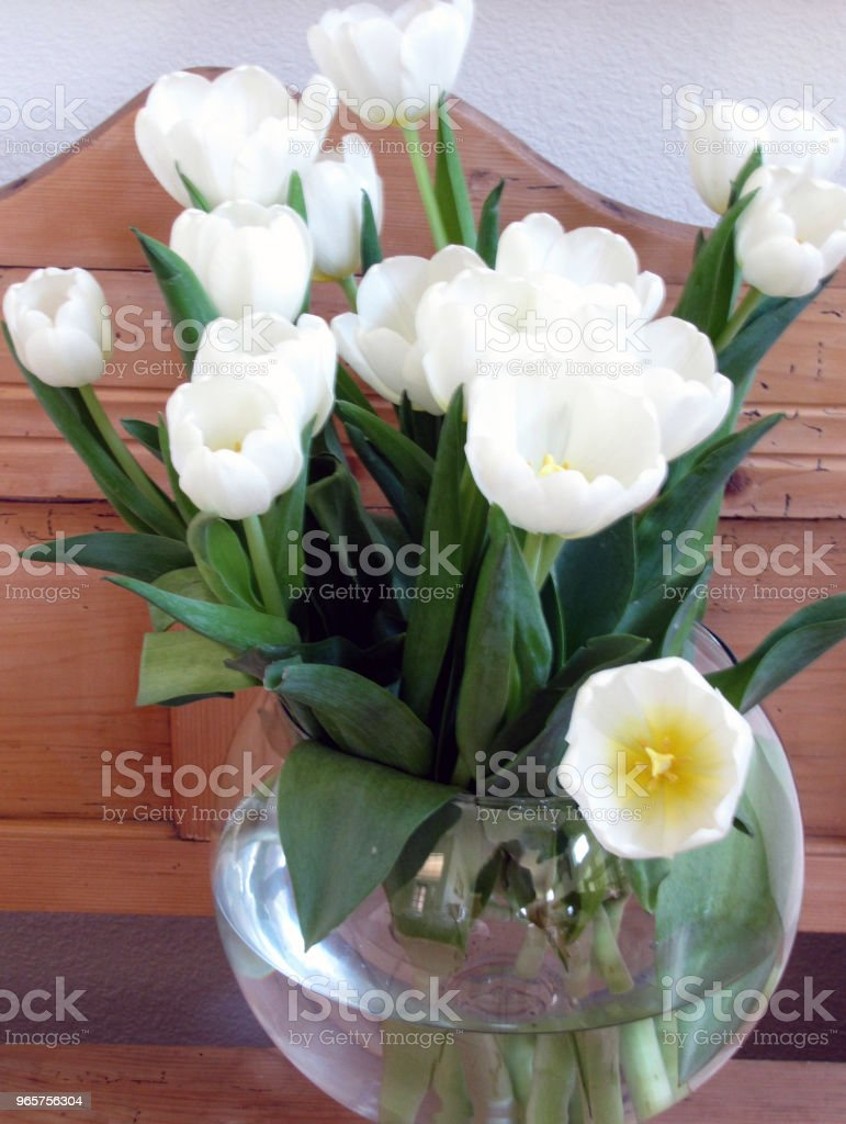 White Tulips in Bowl on Pine Still Life - Royalty-free Beauty Stock Photo