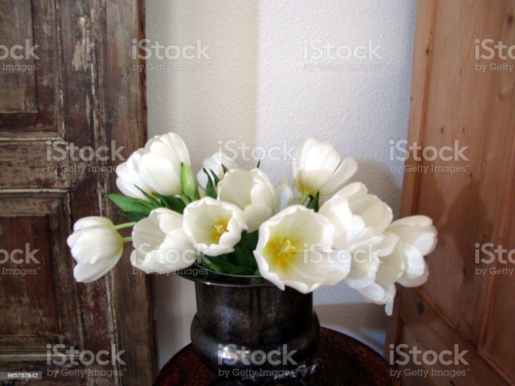White Tulips in Silver Bowl Still Life - Стоковые фото Без людей роялти-фри