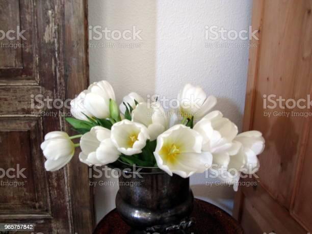 White Tulips In Silver Bowl Still Life — стоковые фотографии и другие картинки Без людей