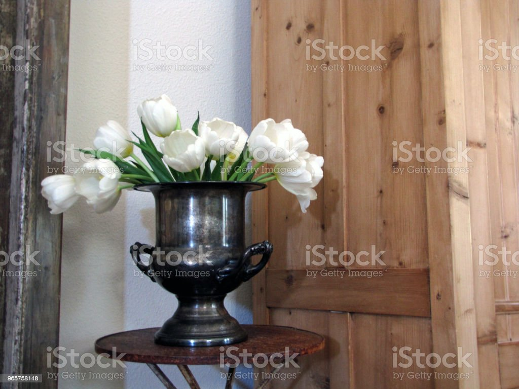 White Tulips in Silver Bowl Still Life - Royalty-free Beauty Stock Photo