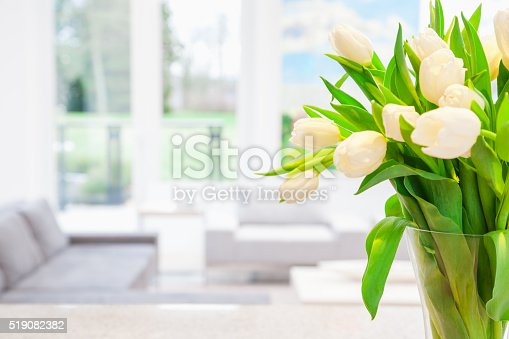 994217090 istock photo White tulips in vase 519082382