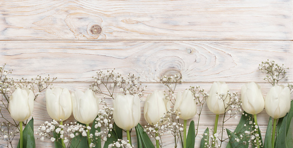 White tulips on a light wooden background. View from above. Selective focus.