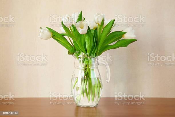 Weiße Tulpen Stockfoto und mehr Bilder von Blatt - Pflanzenbestandteile