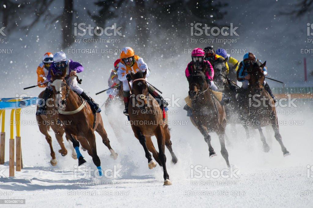 White Turf St.Moritz – Foto