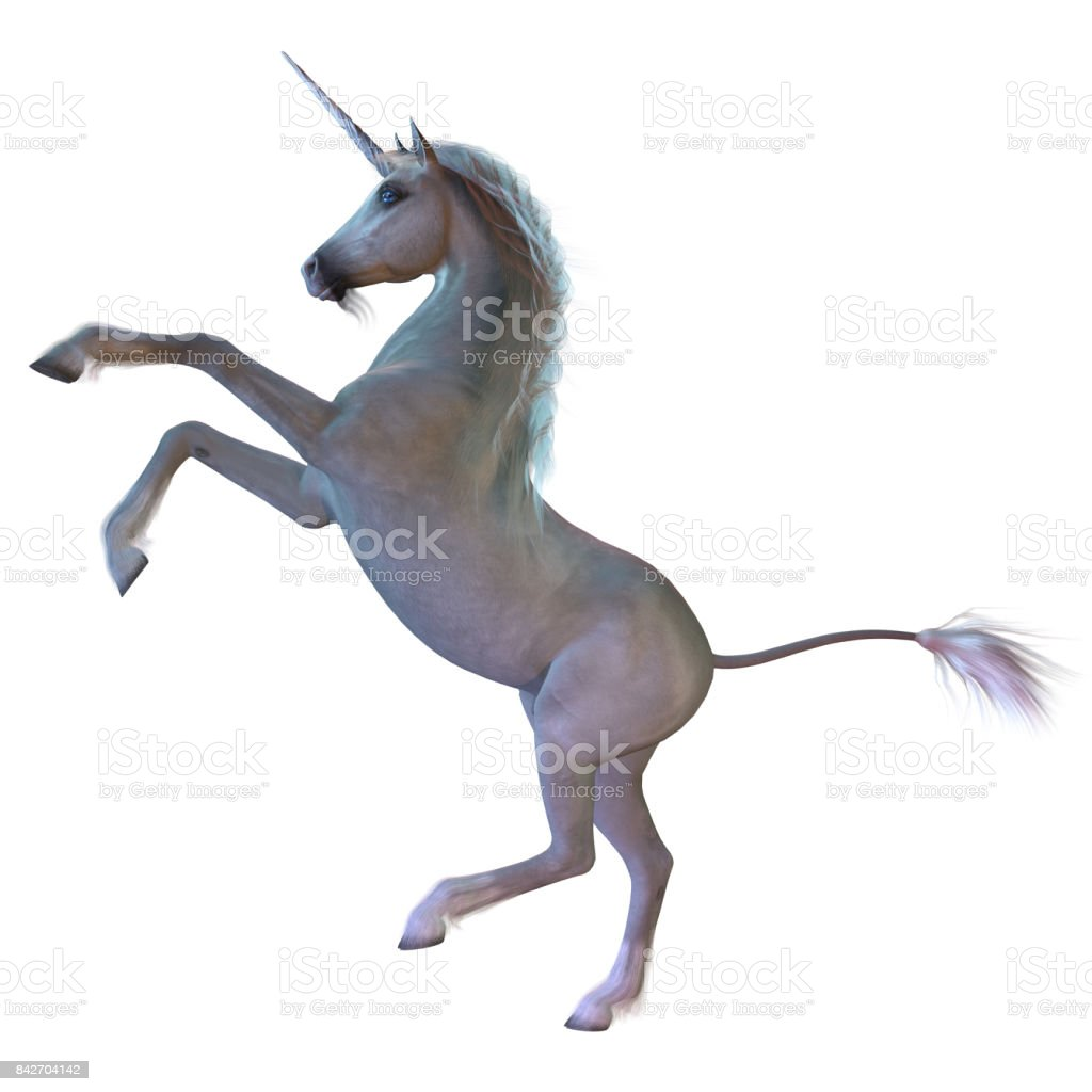 Blanco unicornio - foto de stock