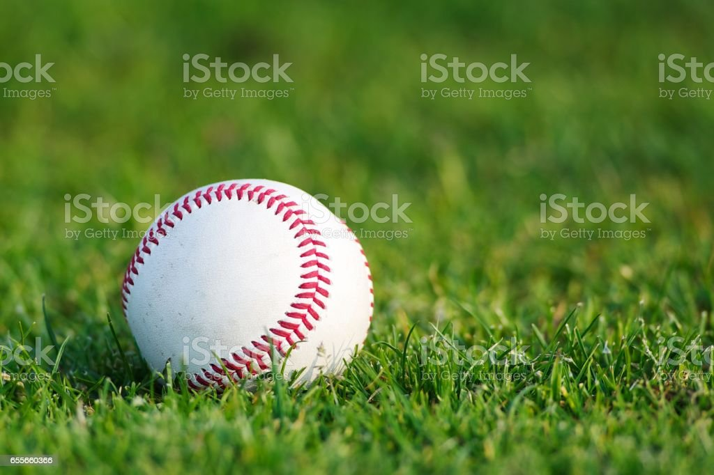 White used baseball stock photo