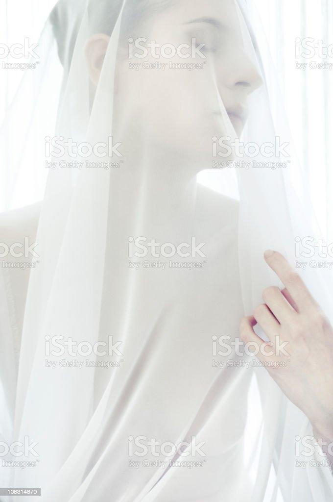 white veil stock photo