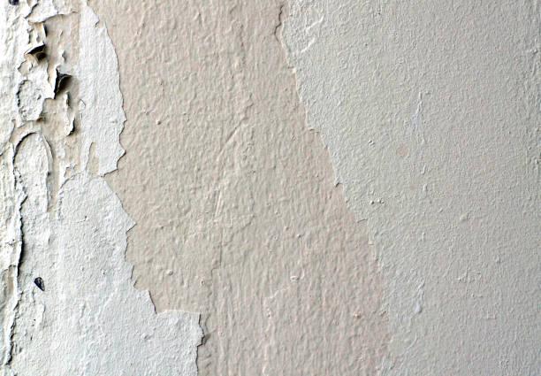 white wall stock photo