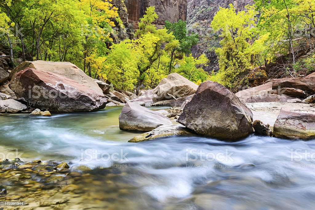 White water on the Virgin River, Zion Canyon royalty-free stock photo