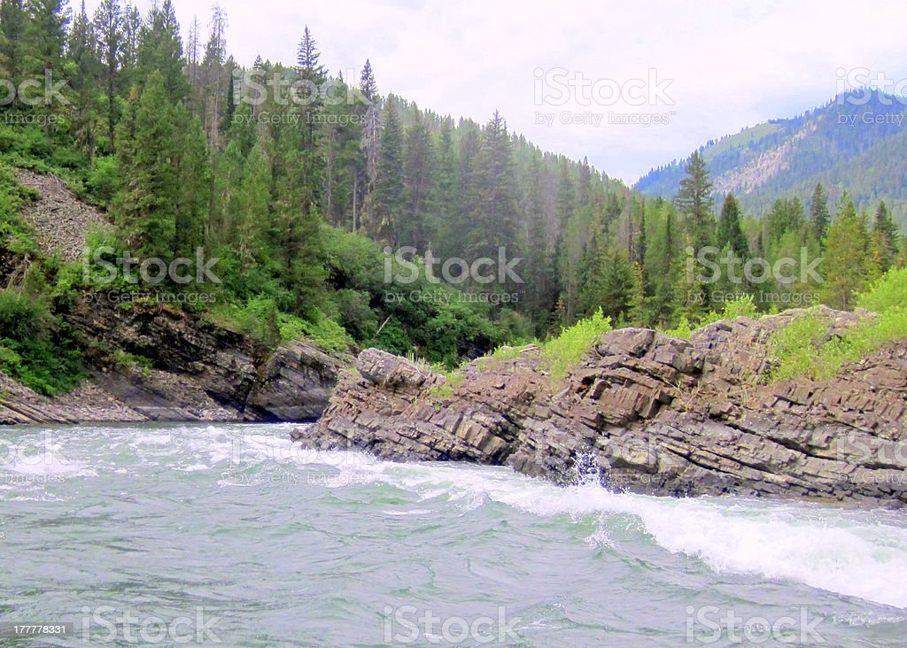 White Water Rafting in Yellowstone royalty-free stock photo