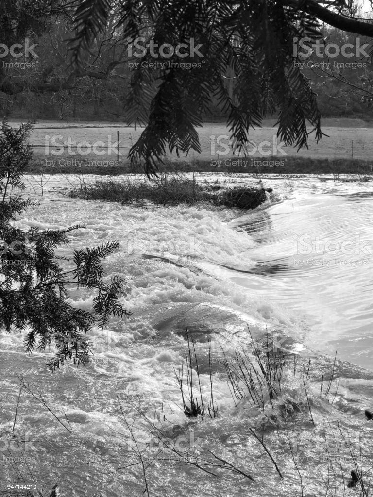 white water river in flood wild nature weather stock photo