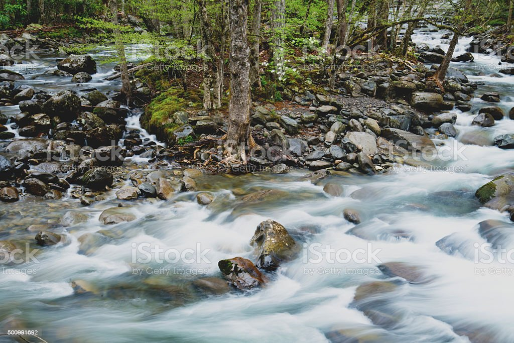 White water stream surrounds a little island in spring. stock photo
