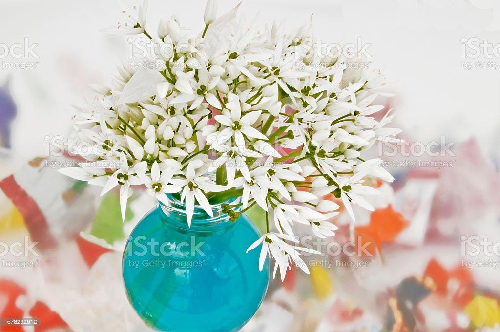 weisse Baerlauchblueten in einer Vase mit blauem Wasser und buntem...