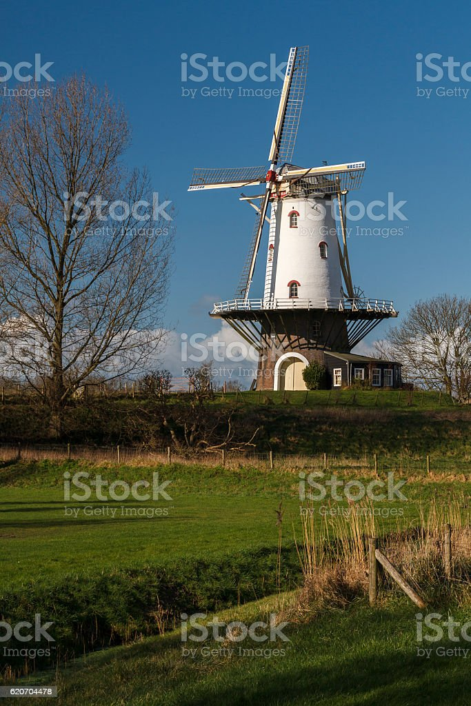 White windmill in Veere 1 stock photo