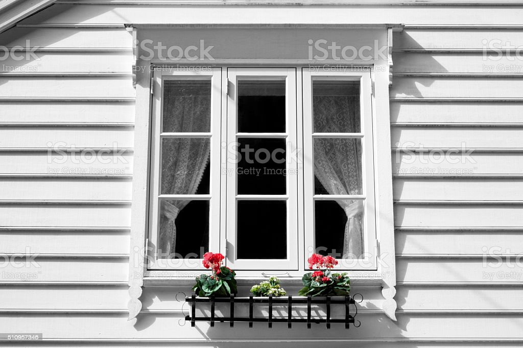 White window and window box White color window in a wooden white house. Two flowerpots with red color flowers. Architecture Stock Photo