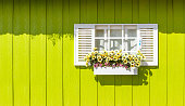 White window and wooden walls yellow. It's colorful.