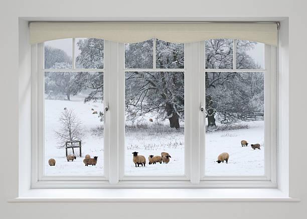White windows and sheep in snow picture id156279790?b=1&k=6&m=156279790&s=612x612&w=0&h=fpkwfizfekwqyw179rzpyxp1alrqkajv ywg9gipt6i=