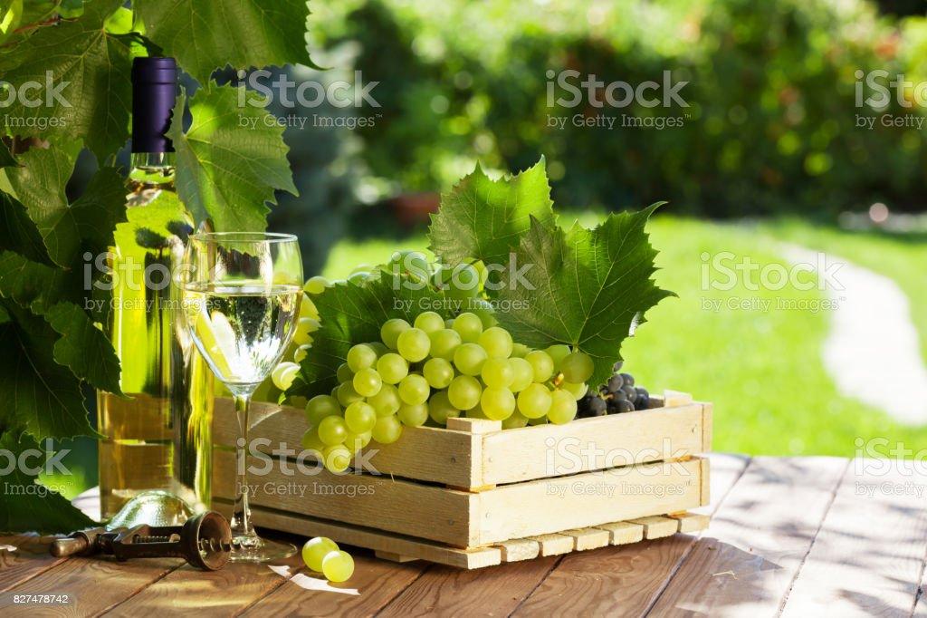 White wine bottle, glass, vine and grapes stock photo